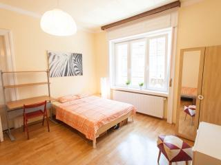2 bedrooms warm apartment for group, Budapest