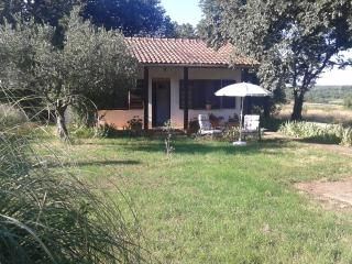 Small house in quet area, animals alowed -  garden, Umag