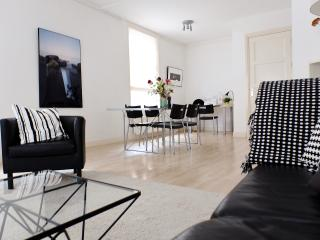 Luxury Apartment, City Center Delft