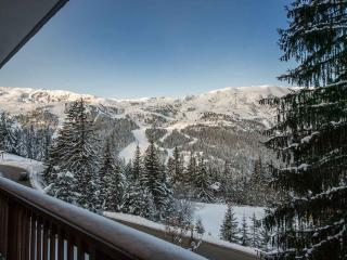 Apartment Anselm, Meribel