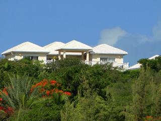 White Osprey: Spectacular Views from Every Room, Providenciales
