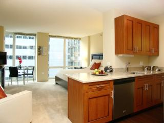 MODERN LOOP FURNISHED STUDIO APARTMENT, Chicago