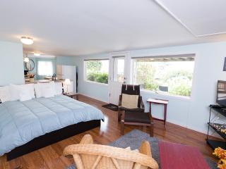 Large Studio with Water and Mountain View -, Seattle