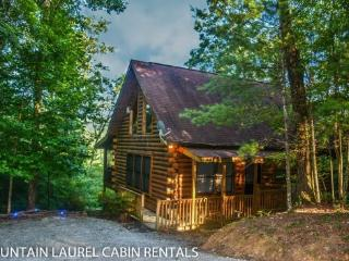 3 BEARS LODGE- 2BR/1.5BA, SLEEPS 4, BEAUTIFUL MOUNTAIN VIEW, GAS LOG FIREPLACE, HOT TUB ON SCREENED PORCH, GAS GRILL, AND A FOOSBALL TABLE! ONLY $99 A NIGHT!, Blue Ridge