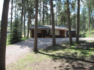 Lazy Pines Cabin, Rapid City