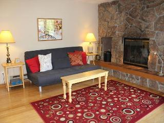 Remodeled 2 bedroom Condo in the Town of Dillon