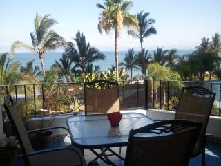 2 bed 2 bath condo in Old Town-Romantic Zone, Puerto Vallarta