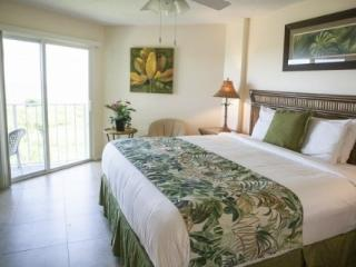 Beautiful & Spacious 2/2 Condos with Ocean Views, Tavernier