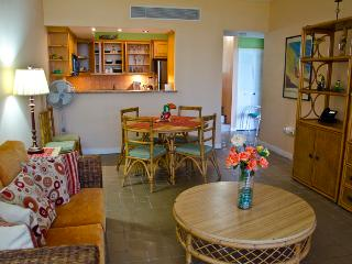 Impressive Beach Accessible Two Bedroom Oceanside Villa (BV228), Humacao
