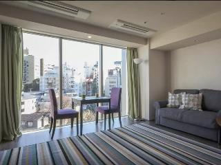 Modern apartment just 3 min from roppongi st., Minato