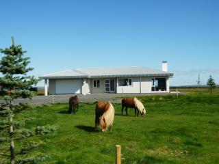Top location for major attractions in S. Iceland, Selfoss