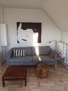 Newly renovated apt in central Copenhagen, Frederiksberg