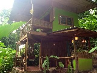 Photosynthesis Jungle Bungalows, Cocles