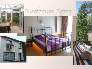 Guesthouse Figaro, Maastricht
