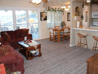 2 Bedroom 2 Bath Private Deck Units - 1203, Indian Point
