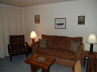 Beaver Village Condo Unit 1821, Winter Park