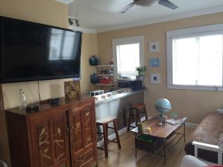 South Beach Fully Furnished 3 Blocks from beach, South Miami