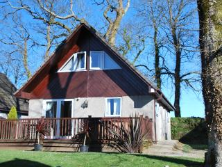Luxury Lodge contemporary style St Tudy Cornwall, Padstow