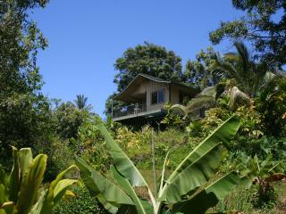 Private Jungle Cottage; Waterfalls, Natural Pools, Haiku