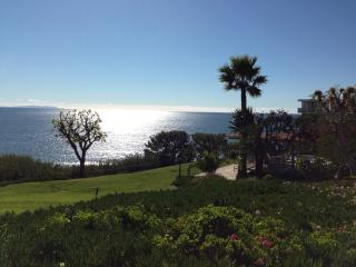 Ocean Views, Walk to the Beach, Tennis and Pool, Santa Monica