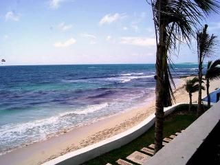 Welcome to Williams Apartment, Puerto Morelos