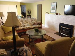 Large 2-Bedroom Apartment w/Cozy Gas Fireplace, Missoula