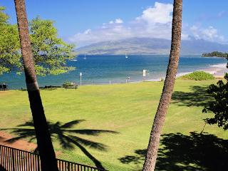 ROYAL MAUIAN, #202, Kihei