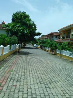 Independent Fully Furnished Bungalow in Goa, Colva