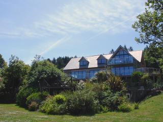 S67 - Hedgerows, Falmouth