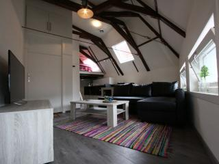Super Stylish Apt in Heart of Town, Utrecht