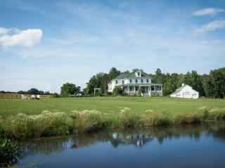Amazing Country Luxury Estate, Reva