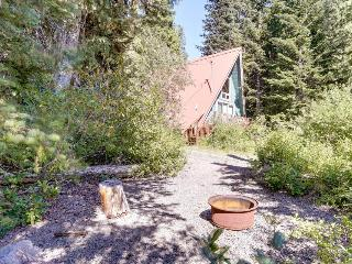 Pet-friendly cabin with room for eight, close ski access!, Government Camp
