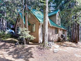 Charming Mt. Hood cabin with room for 10!, Government Camp