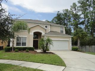 Grand Villa with Conservation Pool, Kissimmee
