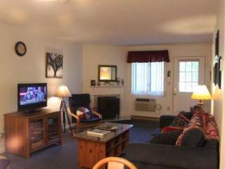 Spacious 1BR condo with walk-in closet, full bath - B1 123B, Lincoln