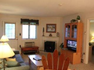 2BR condo with Queen beds, TV/VCR - B1 119B, Lincoln