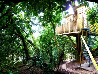 The Nest Tree House, Honiton