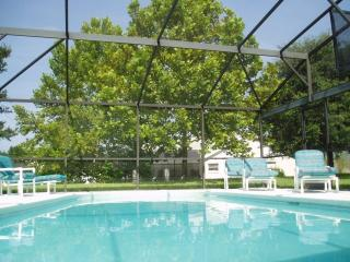 South Facing Pool - Family Villa near Disney, Clermont