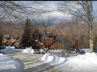 Sugarbush Mad River Ski Season Vacation Rental, Fayston
