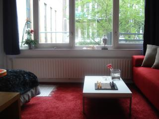 Nice Cozy Room Near Center, Amsterdam