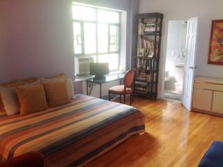 2 Private Bedrooms Avail Upscale Apt 15 min to NYC, Forest Hills