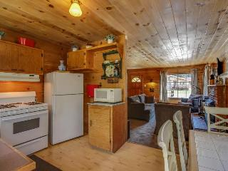 Charming cabin w/ huge backyard and private hot tub!, Big Bear Region