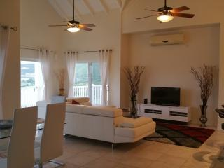 Stunning Views - Luxury New 2Bd Condo - Open Plan, Basseterre