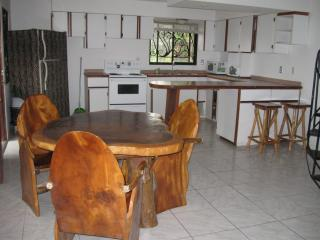 Cozy Apartment by the Beach - Playa Hermosa, Jaco