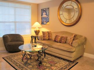 PERFECT JACUZZI  CONDO 1BD- NO STAIRS, Branson