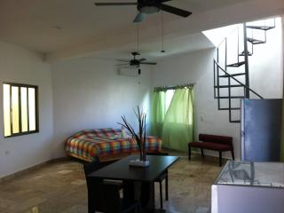Great Studio, Private Terrace, Jacuzzi and Kitchen, Playa del Carmen