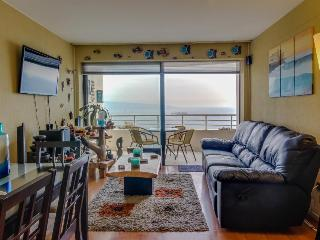 Gorgeous seaside condo with a shared pool!, Vina del Mar