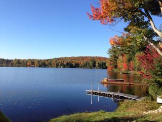 LAST CHANCE TO SEE THE COLORS - Algonquin Hideaway, Kearney
