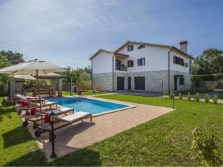 Villa Gardenia with pool for 10 people, Nedescina