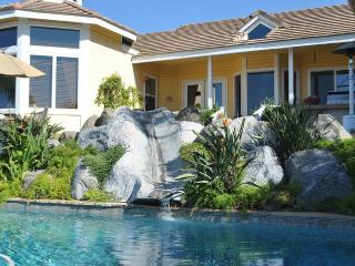 Gorgeous Custom View Home With Pool, Oceanside